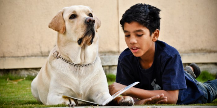 animal assisted education - animal angels foundation