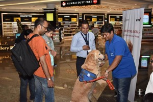 Animal Angels Comforting Angels at Mumbai International Airport!
